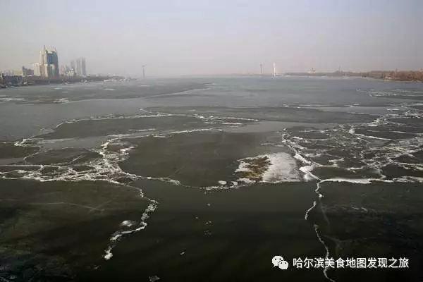 """开江食鱼记:老饕巧烹大花鲢,""""一鱼四吃""""不简单"""